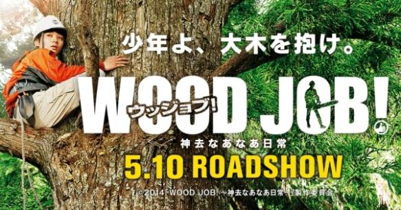 wood job rect promo