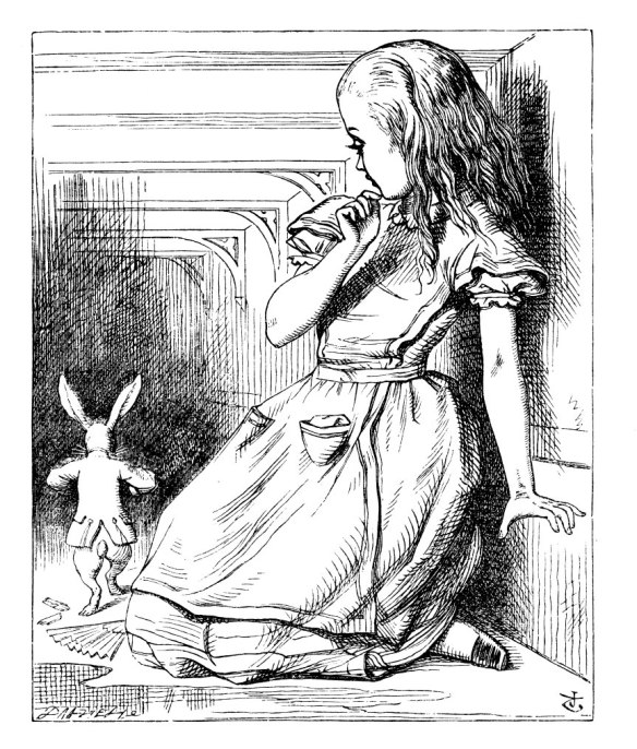 Alice +rabbit