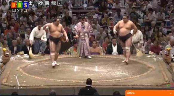 sumo-web4